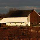 The Trossle Barn by OntheroadImage