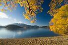 Lake Wanaka, Autumn. by Michael Treloar