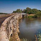 Greatham Bridge by Dave Godden