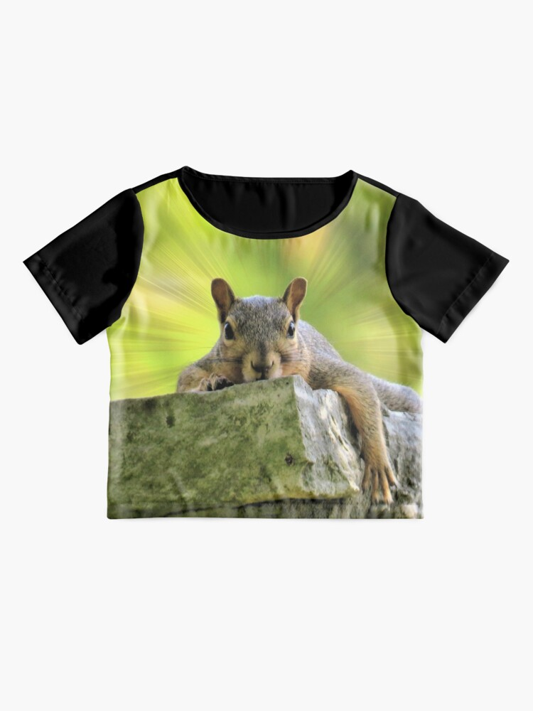 Alternate view of Relaxed Squirrel Chiffon Top