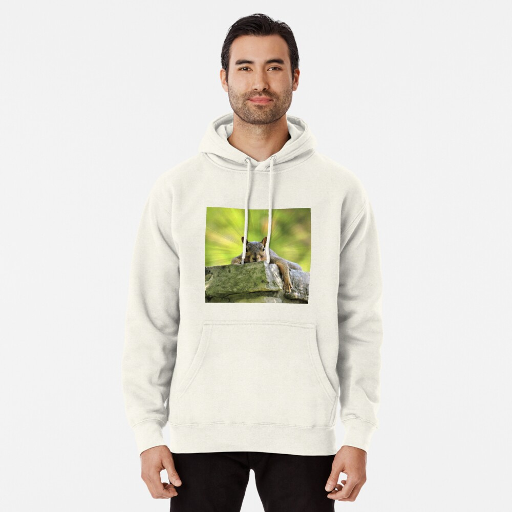 Relaxed Squirrel Pullover Hoodie