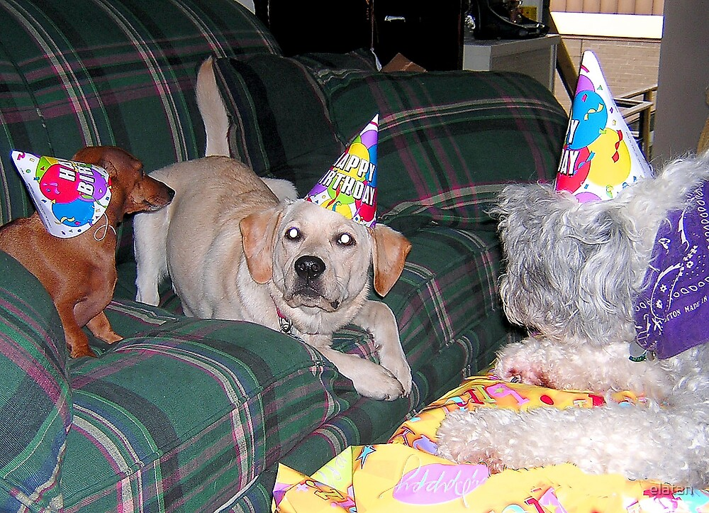 BIRTHDAY PARTY. by elatan