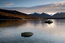 Lake Manapouri. by Michael Treloar