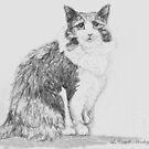 Stumpy the cat by Linda Costello Hinchey