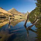 Moke Lake. by Michael Treloar
