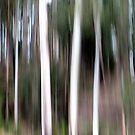 Tree Spirits by Kitsmumma