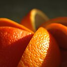patterns in orange by Clare Colins