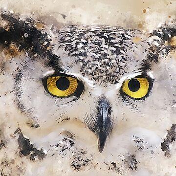 Wise Owl by markcsalmon