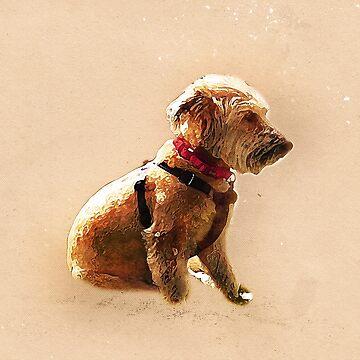 Terrier Cross by markcsalmon