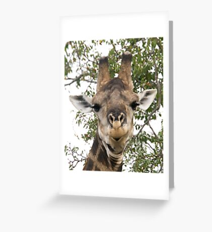 Well It's Like This ... Greeting Card