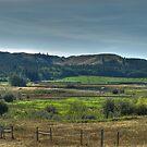 Hidden Valley Farm by PFrogg