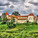 Swirzh castle by Elena Skvortsova