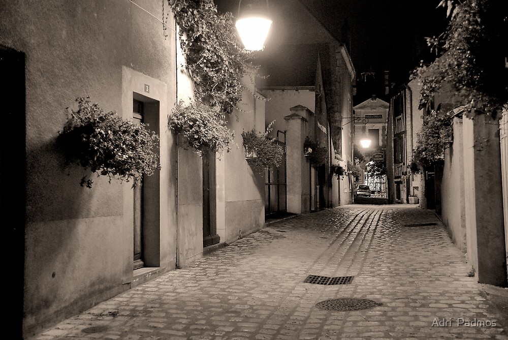 Night in Beaugency by Adri  Padmos