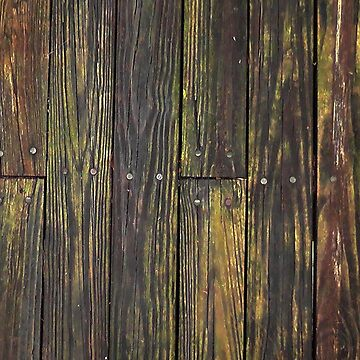 Weathered Boards and Nails by nicoletteabides