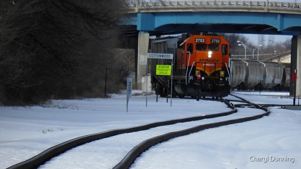 closer train by Cheryl Dunning