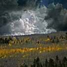 4740 by peter holme III