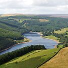Along the Derwent Reservoir by Duncan Payne