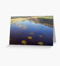 Marshy lake (The Baltic states) Greeting Card