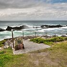 Pebbly Beach Forster 97100 by kevin Chippindall