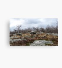Desolate Mountain 2 Canvas Print