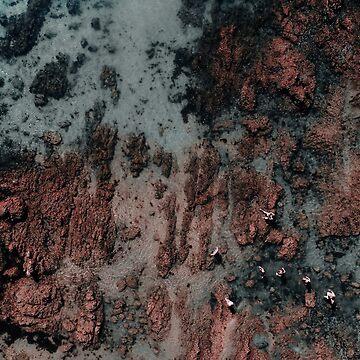 Walking on Mars by Ingz