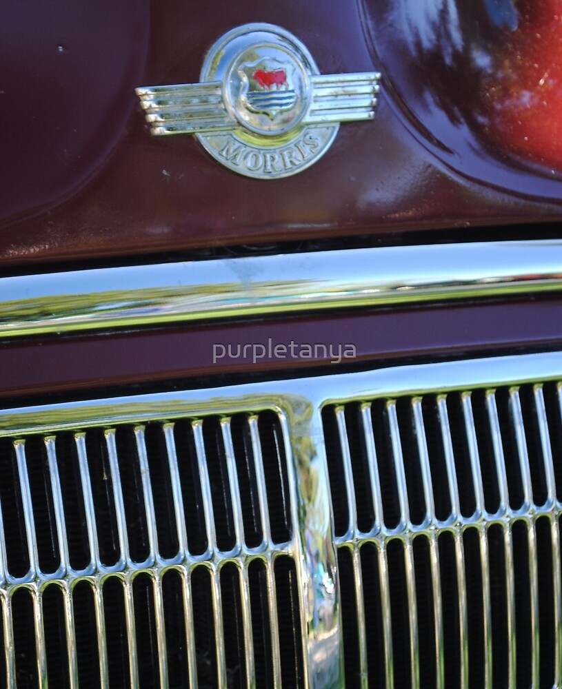 Morris Grille by purpletanya
