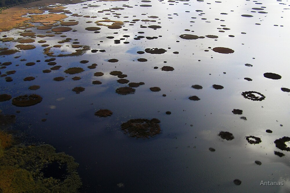 Marshy lake 2 (The Baltic states) by Antanas