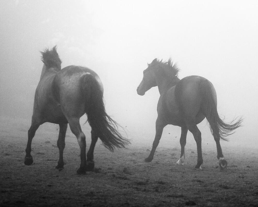Running Wild by John Burtoft