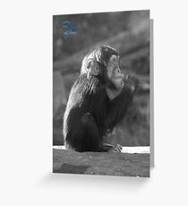 Life Is Like A Monkey Greeting Card