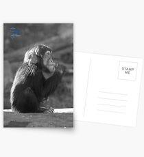 Life Is Like A Monkey Postcards