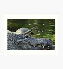 Alligator and Turtle, As Is Art Print