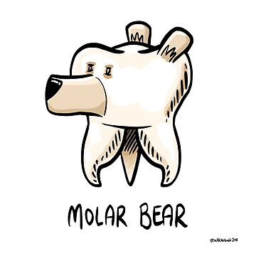 Molar Bear by DocHackenbush