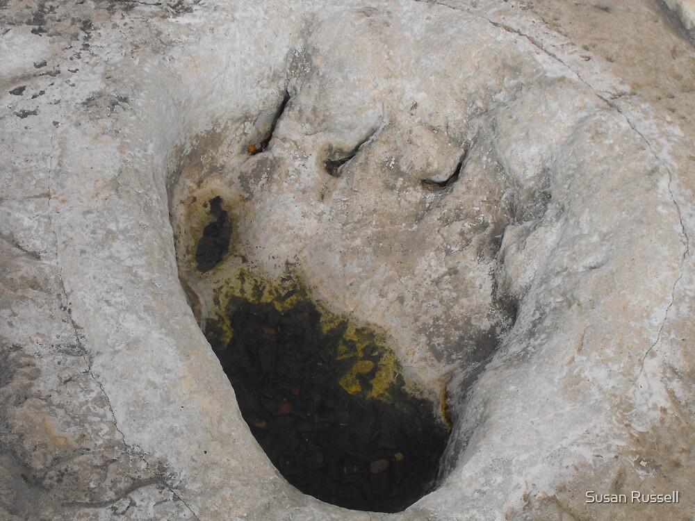Dinosaur Footprint by Susan Russell