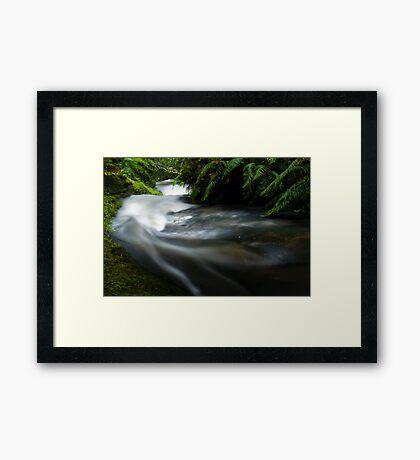 Small stream in the Tangarakau Gorge Framed Print