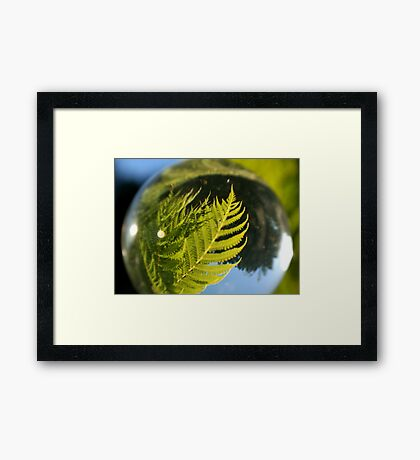 The Future is a Bright Green Tree Fern Framed Print