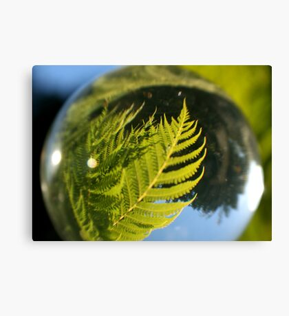 The Future is a Bright Green Tree Fern Canvas Print