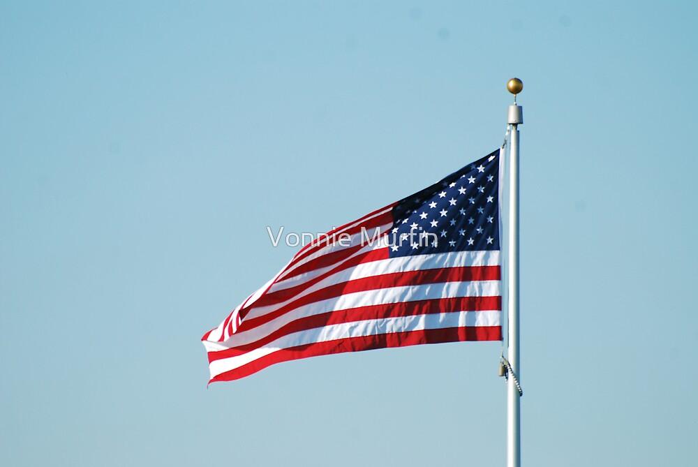 American Flag by Vonnie Murfin
