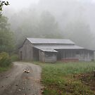 Foggy Morning in the Mountains... by Linda Costello Hinchey