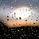 Rain Drops on window 3 by Phillip Shannon