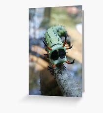Hickory Horned Devil Caterpillar Greeting Card