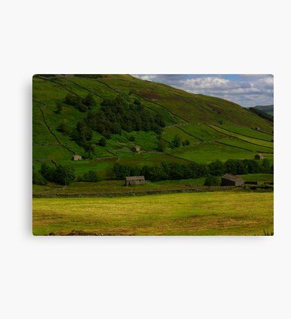 Hillside Barns - Swaledale,North Yorks. Canvas Print