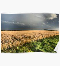 A landscape in HDR Poster