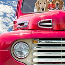 Retrievers in Retro Red by Maria Dryfhout