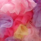 Rainbow Tutus by cebrfa