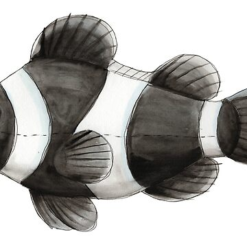 Black clown fish in watercolor by narwhalwall