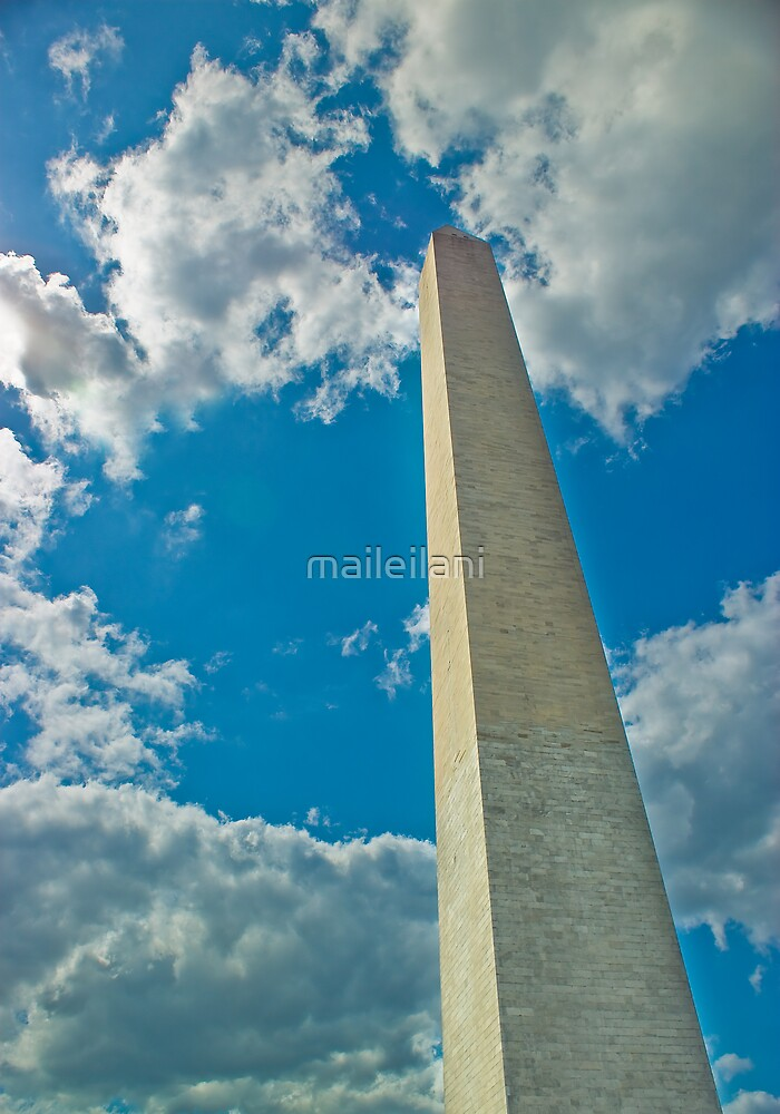 The Washington Monument by maileilani