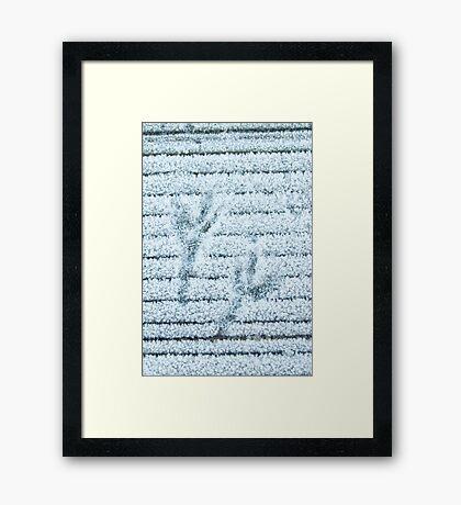 Birds footprints on icy peer  Framed Print