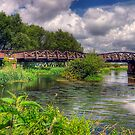 Railway Bridge over the Avon by Mark Waugh