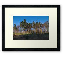 Framed Art Print
