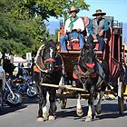 Tombstone Stagecoach Arriving - Arizona 2014 by Ann  Warrenton